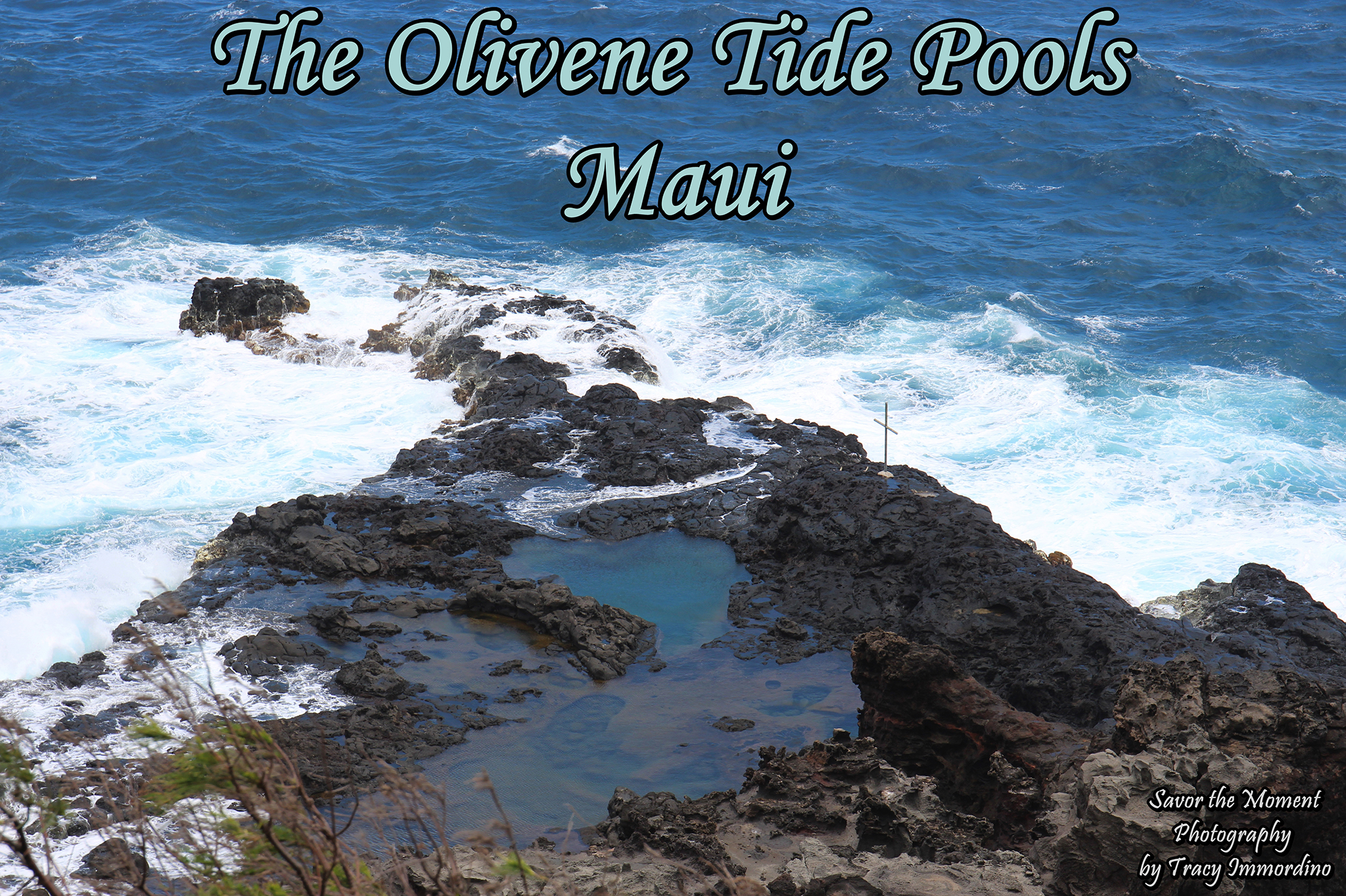 The Olivene Pools - Savor the Moment Photography